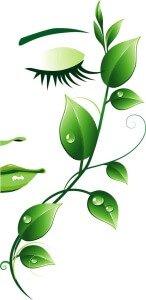Djelovanje hidrolata kadulje dermatolosko djelovanje