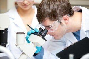 Istraživanje ljekovitosti kadulje