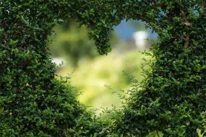 Moderan i zelen način života